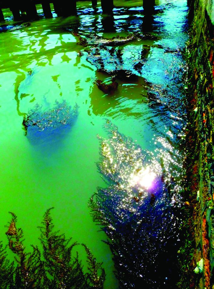 venice_waterway